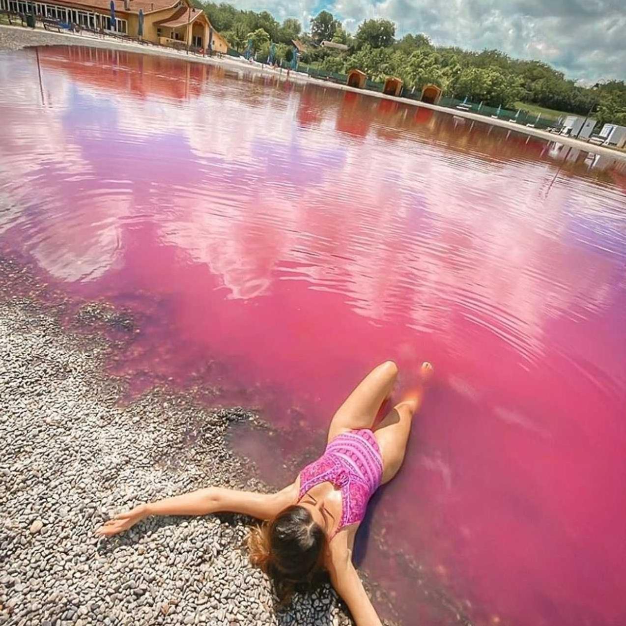 Pink jezero